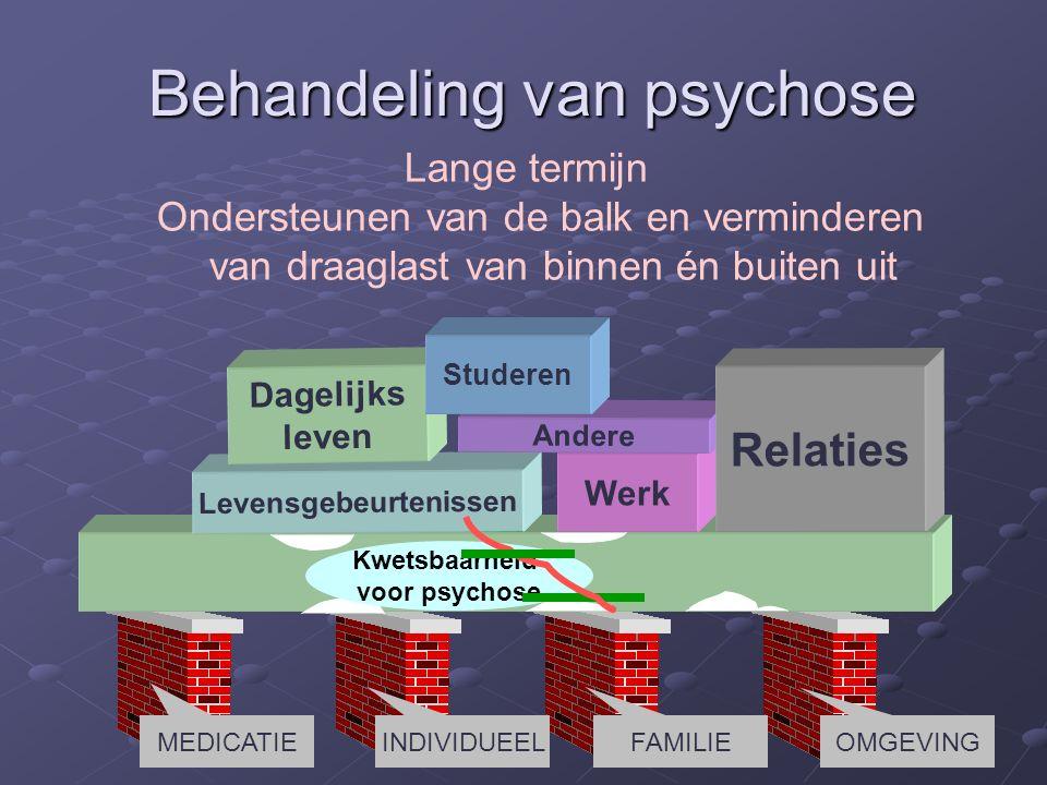 Levensgebeurtenissen Werk Dagelijks leven Andere Relaties Kwetsbaarheid voor psychose Studeren Behandeling van psychose Lange termijn Ondersteunen van de balk en verminderen van draaglast van binnen én buiten uit MEDICATIE INDIVIDUEELFAMILIE OMGEVING