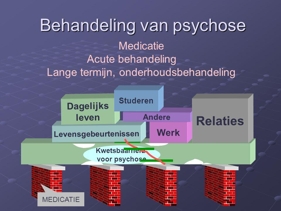 Levensgebeurtenissen Werk Dagelijks leven Andere Relaties Kwetsbaarheid voor psychose Studeren Behandeling van psychose Medicatie Acute behandeling Lange termijn, onderhoudsbehandeling MEDICATIE