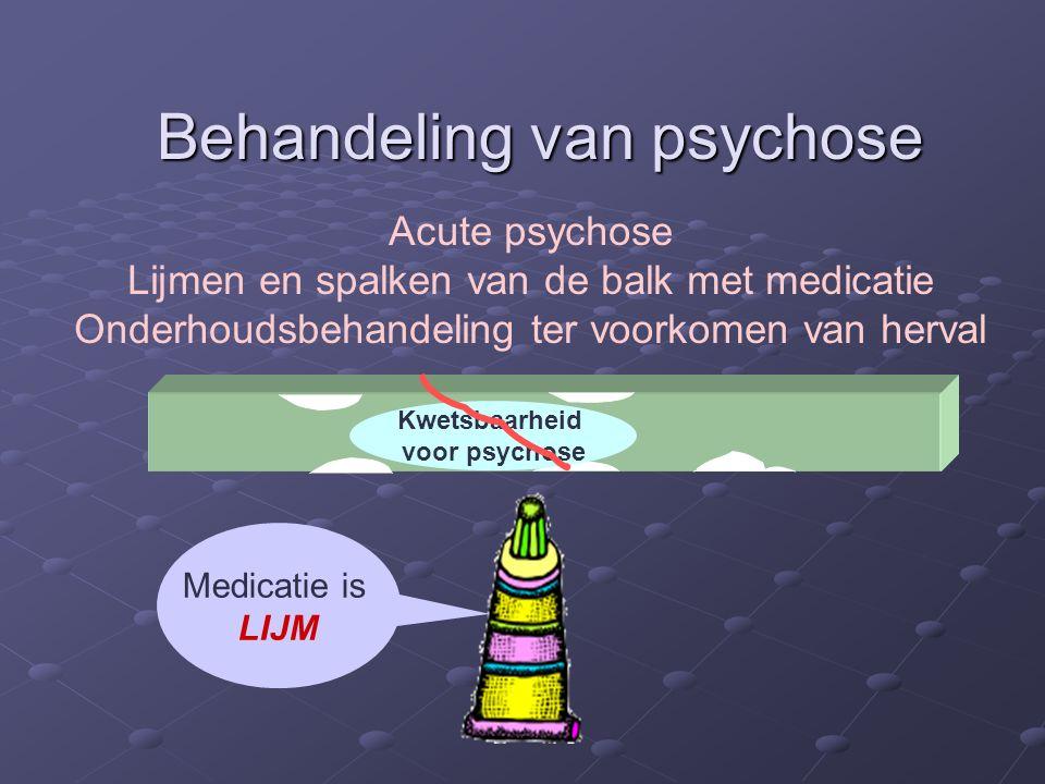 Acute psychose Lijmen en spalken van de balk met medicatie Onderhoudsbehandeling ter voorkomen van herval Behandeling van psychose Kwetsbaarheid voor psychose Medicatie is LIJM