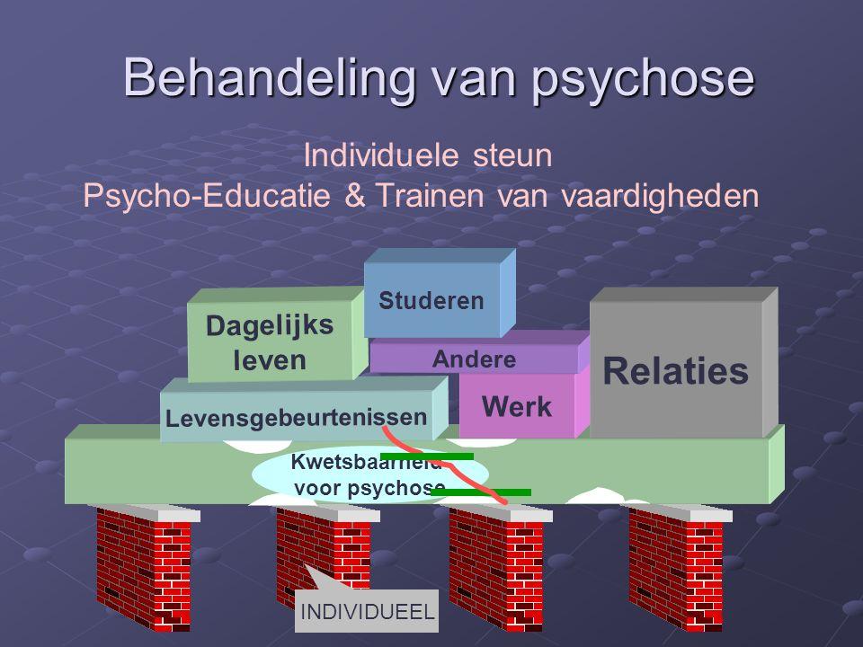 Levensgebeurtenissen Werk Dagelijks leven Andere Relaties Kwetsbaarheid voor psychose Studeren Behandeling van psychose Individuele steun Psycho-Educatie & Trainen van vaardigheden INDIVIDUEEL