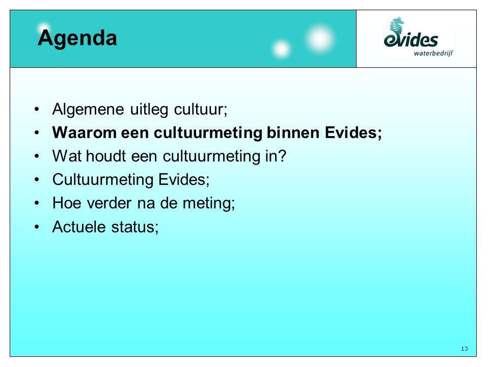 13 Agenda Algemene uitleg cultuur; Waarom een cultuurmeting binnen Evides; Wat houdt een cultuurmeting in.