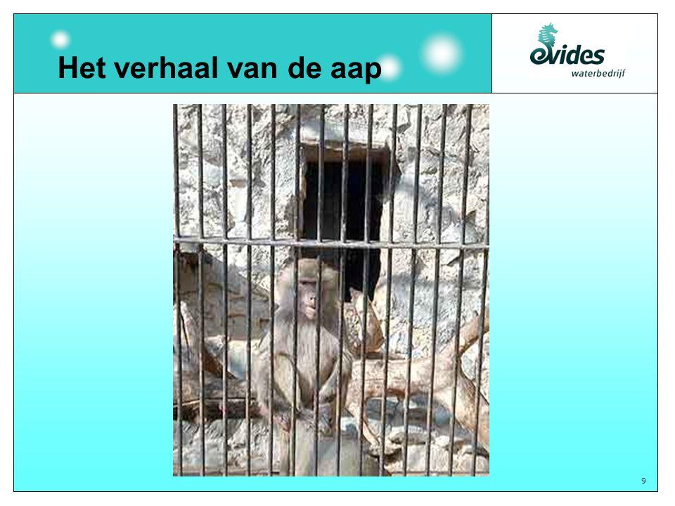 9 Het verhaal van de aap