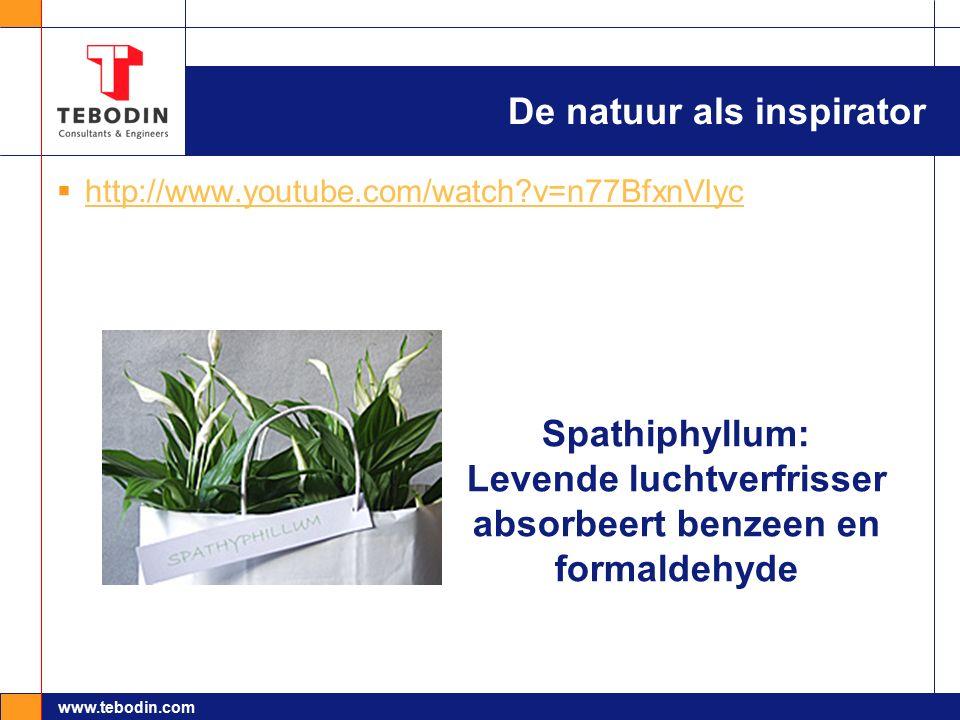 www.tebodin.com De natuur als inspirator  http://www.youtube.com/watch?v=n77BfxnVlyc http://www.youtube.com/watch?v=n77BfxnVlyc Spathiphyllum: Levend