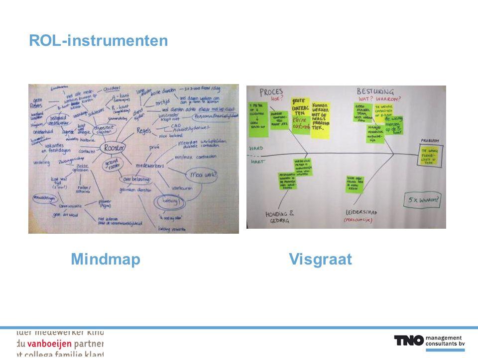 ROL-instrumenten MindmapVisgraat