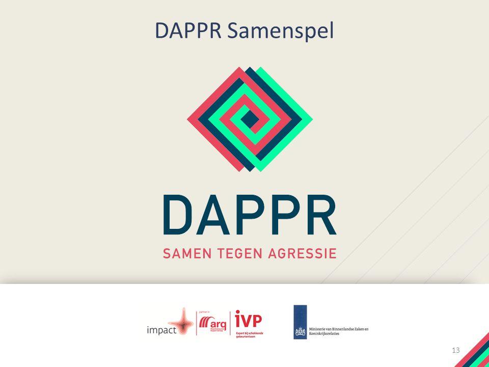 DAPPR Samenspel 13