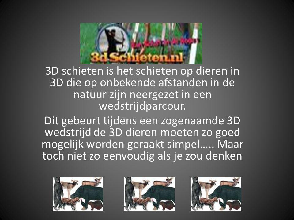 3D schieten is het schieten op dieren in 3D die op onbekende afstanden in de natuur zijn neergezet in een wedstrijdparcour. Dit gebeurt tijdens een zo