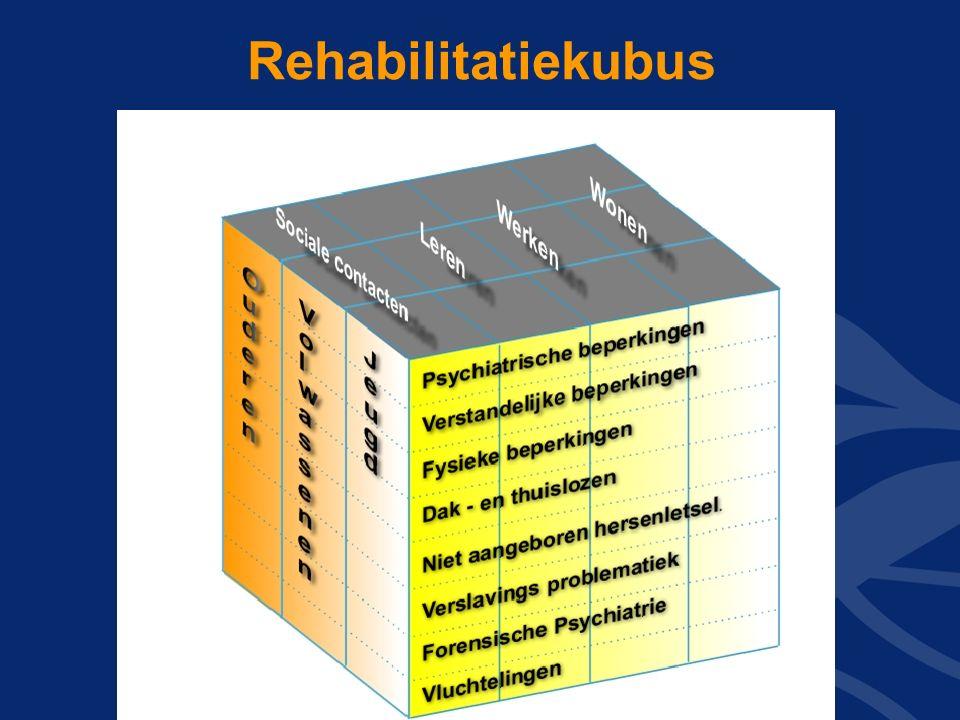 Lectoraat Rehabilitatie / St. Rehabilitatie 92 Rehabilitatiekubus