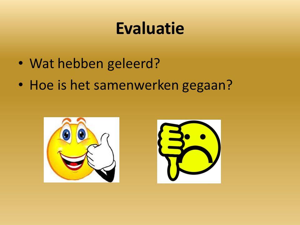 Evaluatie Wat hebben geleerd? Hoe is het samenwerken gegaan?