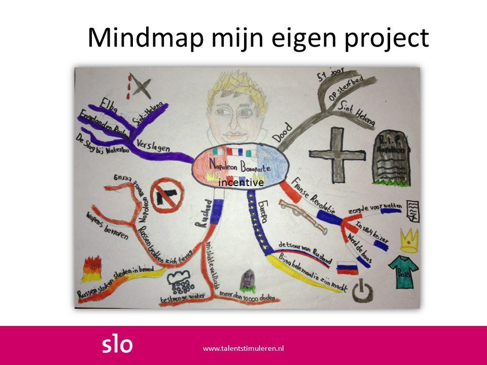 Mindmap mijn eigen project incentive www.talentstimuleren.nl