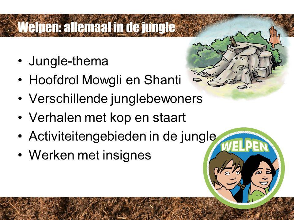 Welpen: allemaal in de jungle Jungle-thema Hoofdrol Mowgli en Shanti Verschillende junglebewoners Verhalen met kop en staart Activiteitengebieden in de jungle Werken met insignes