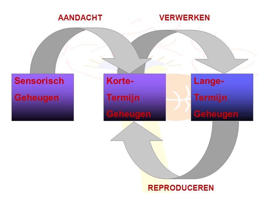 Sensorisch Geheugen Korte- Termijn Geheugen Lange- Termijn Geheugen AANDACHTVERWERKEN REPRODUCEREN