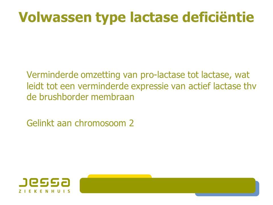 Volwassen type lactase deficiëntie Verminderde omzetting van pro-lactase tot lactase, wat leidt tot een verminderde expressie van actief lactase thv d
