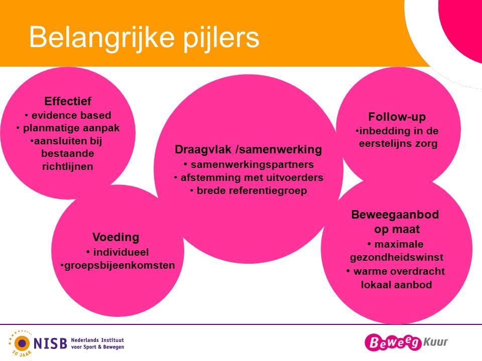 Belangrijke pijlers Follow-up inbedding in de eerstelijns zorg Draagvlak /samenwerking samenwerkingspartners afstemming met uitvoerders brede referent