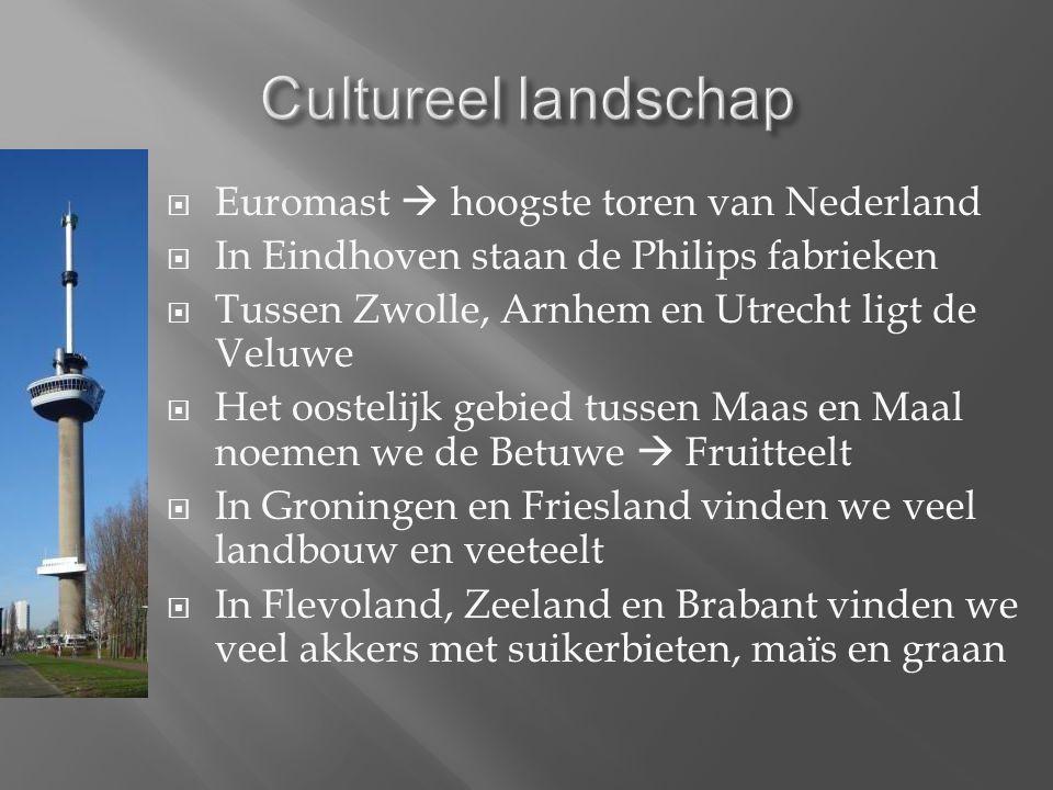  Euromast  hoogste toren van Nederland  In Eindhoven staan de Philips fabrieken  Tussen Zwolle, Arnhem en Utrecht ligt de Veluwe  Het oostelijk gebied tussen Maas en Maal noemen we de Betuwe  Fruitteelt  In Groningen en Friesland vinden we veel landbouw en veeteelt  In Flevoland, Zeeland en Brabant vinden we veel akkers met suikerbieten, maïs en graan