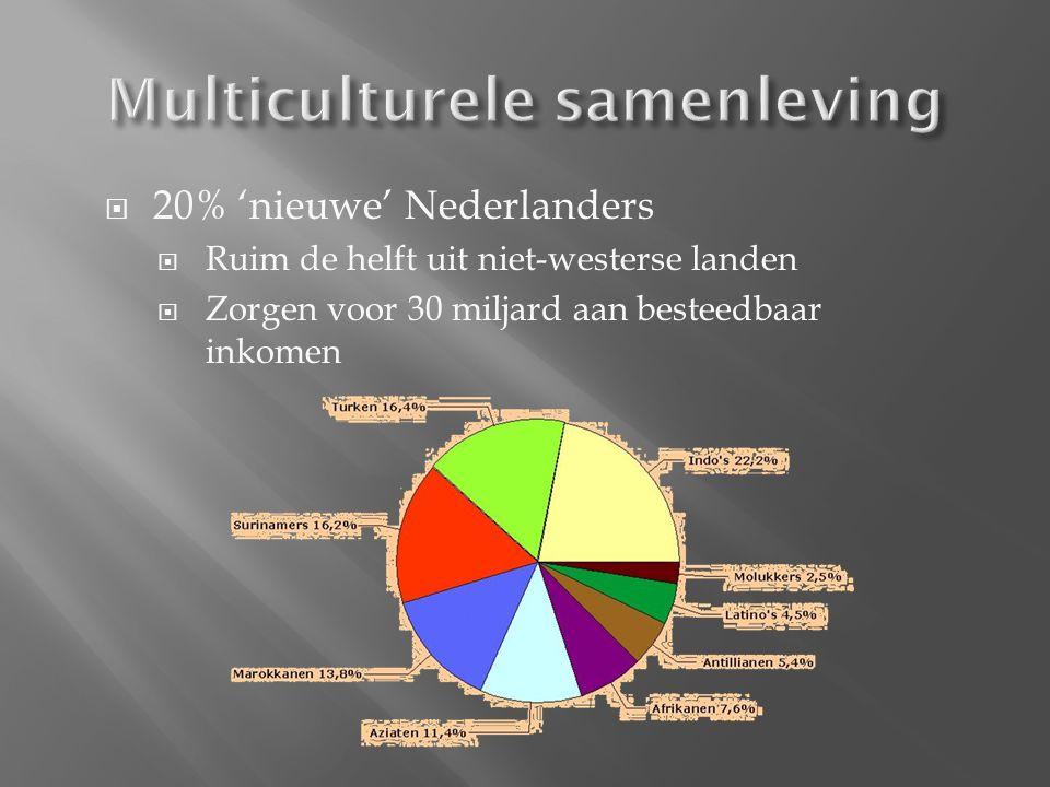  20% 'nieuwe' Nederlanders  Ruim de helft uit niet-westerse landen  Zorgen voor 30 miljard aan besteedbaar inkomen
