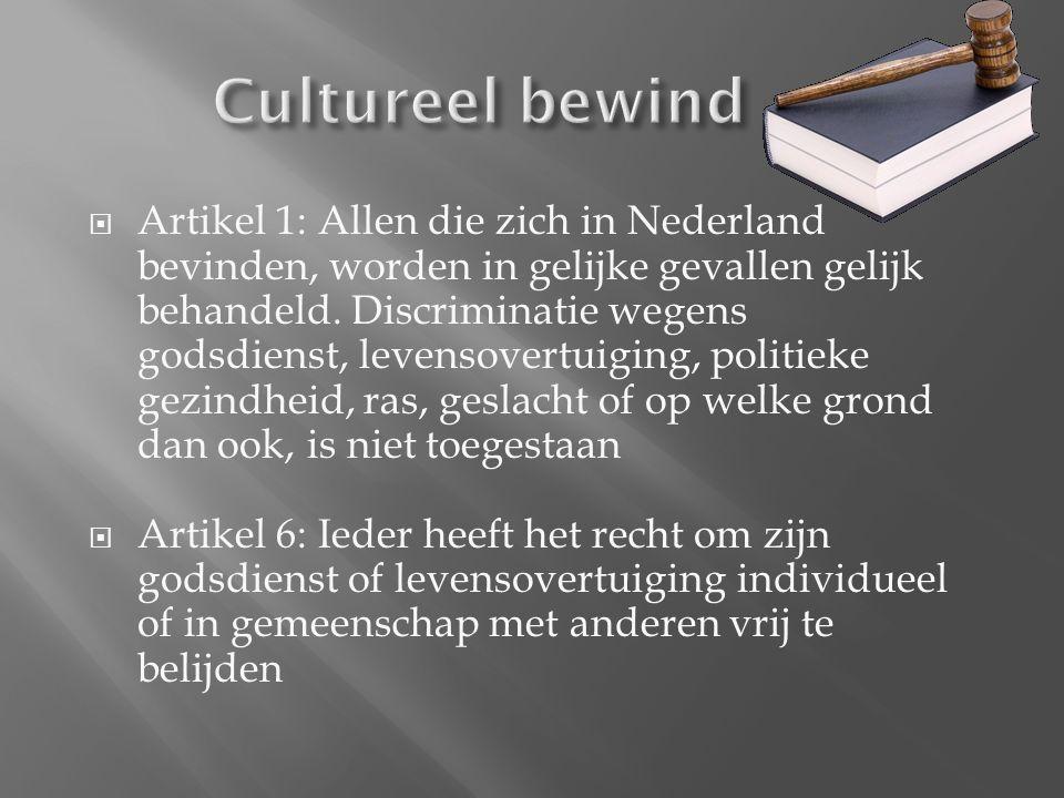  Artikel 1: Allen die zich in Nederland bevinden, worden in gelijke gevallen gelijk behandeld.