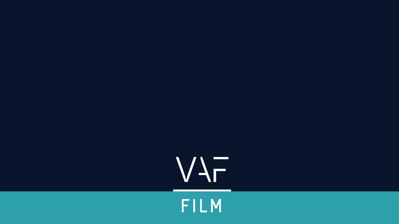 Goedgekeurde projecten per genre AantalTypeSteunbedragMet VAF steun 9Fictie film – minoritair1.975.0002 8Fictie film – majoritair1.325.0007 1Lange Fictie – minoritair375.0000 2Animatie Film – minoritair700.0000 1Animatie serie– minoritair125.0001 21 € 4.500.000