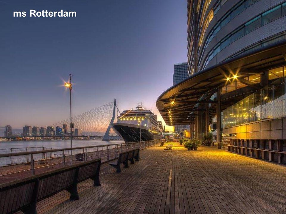 ms Rotterdam