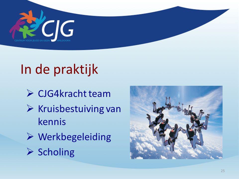 In de praktijk  CJG4kracht team  Kruisbestuiving van kennis  Werkbegeleiding  Scholing 25