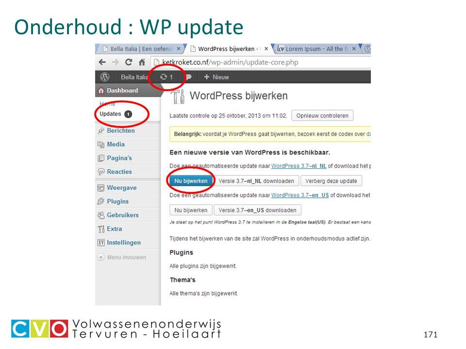Onderhoud : WP update 171