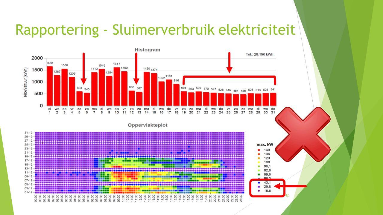 Rapportering - Sluimerverbruik elektriciteit 42