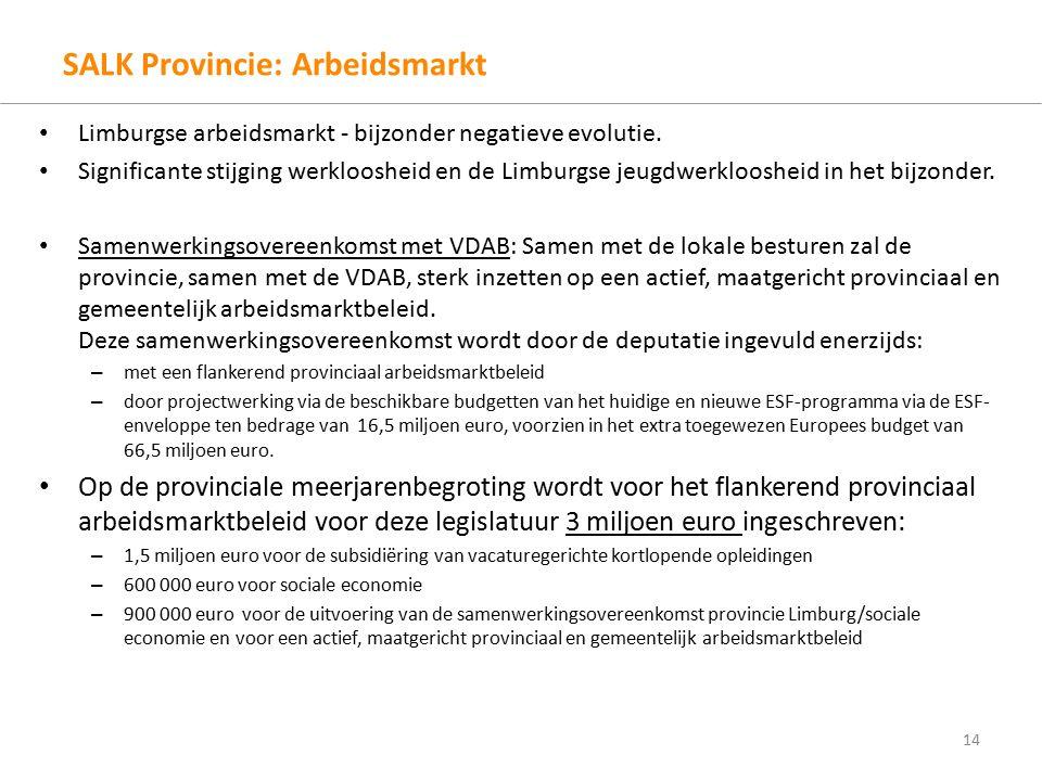 SALK Provincie: Arbeidsmarkt Limburgse arbeidsmarkt - bijzonder negatieve evolutie.