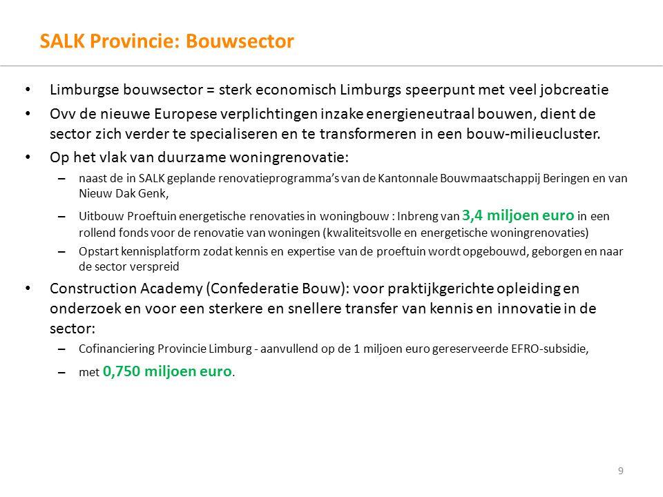 SALK Provincie: Bouwsector Limburgse bouwsector = sterk economisch Limburgs speerpunt met veel jobcreatie Ovv de nieuwe Europese verplichtingen inzake energieneutraal bouwen, dient de sector zich verder te specialiseren en te transformeren in een bouw-milieucluster.