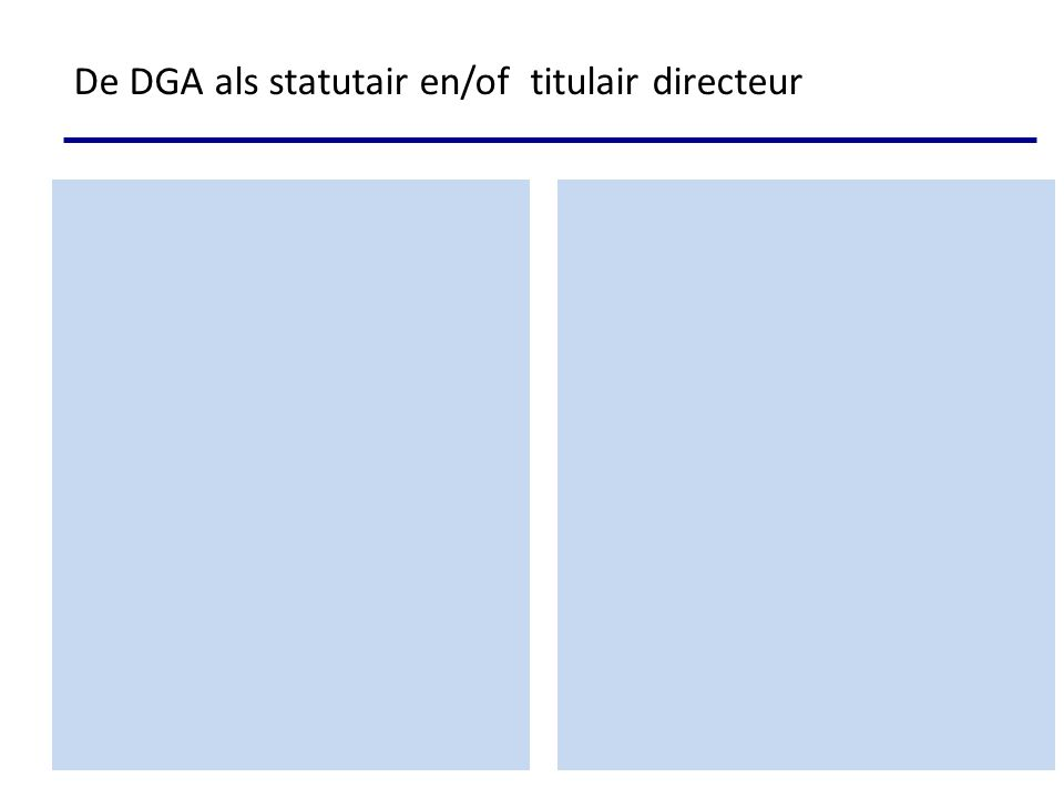 DGA Holding Werk-BV Statutair bestuurder Management ovk + feitelijk bestuurder DGA kind 1kind 2 15% 40% BV 3-den 30% Statutair bestuurder De DGA als statutair en/of titulair directeur