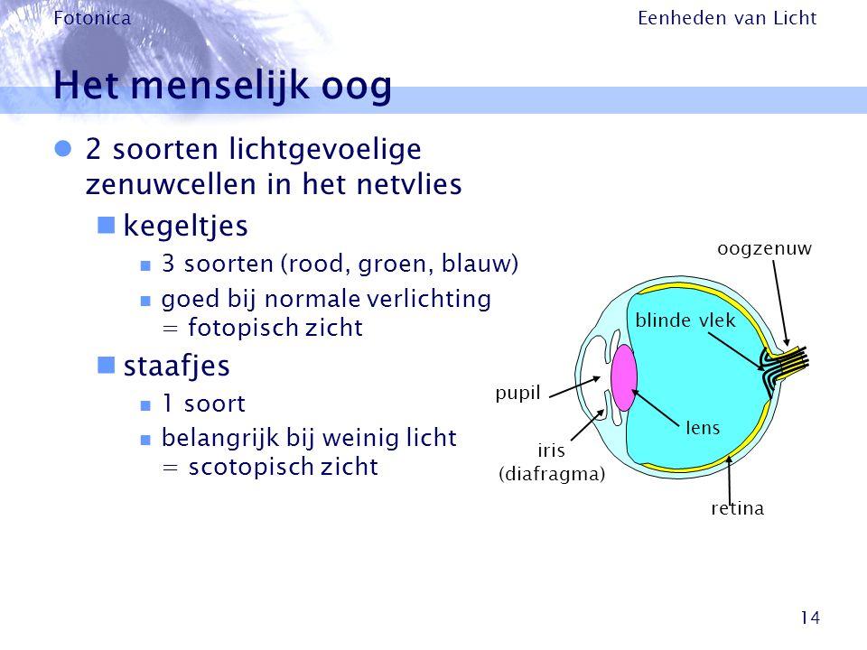 Eenheden van Licht Fotonica 14 Het menselijk oog 2 soorten lichtgevoelige zenuwcellen in het netvlies kegeltjes 3 soorten (rood, groen, blauw) goed bi