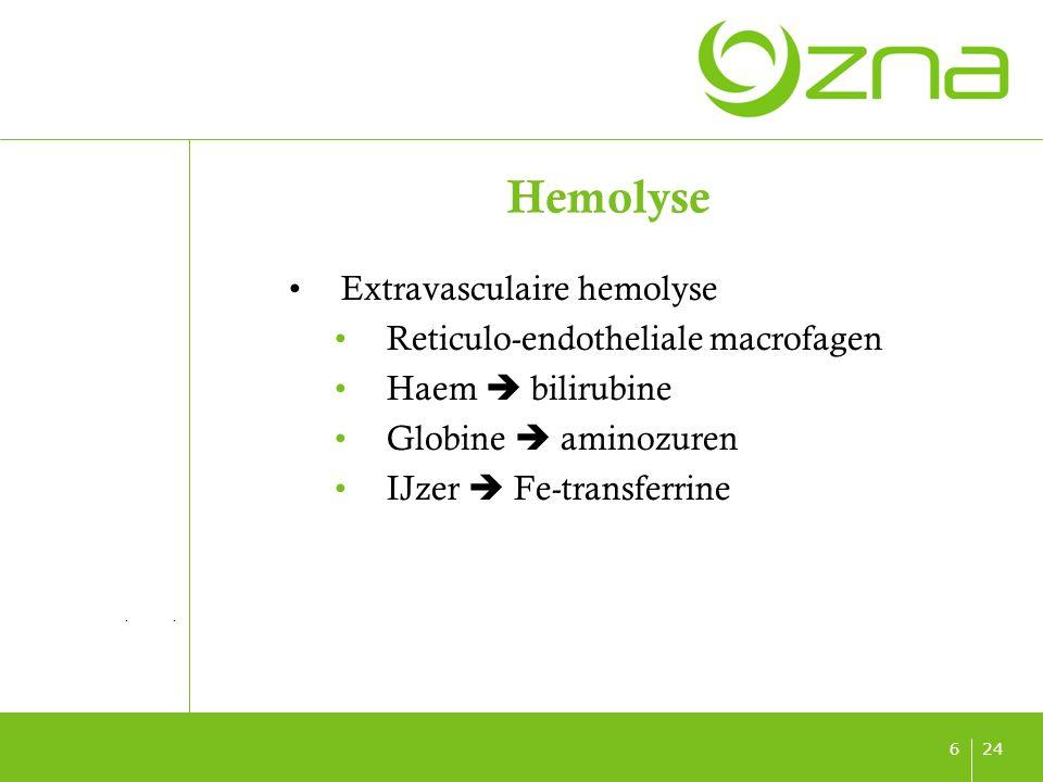 titel ondertitel datum 246 Hemolyse Extravasculaire hemolyse Reticulo-endotheliale macrofagen Haem  bilirubine Globine  aminozuren IJzer  Fe-transferrine