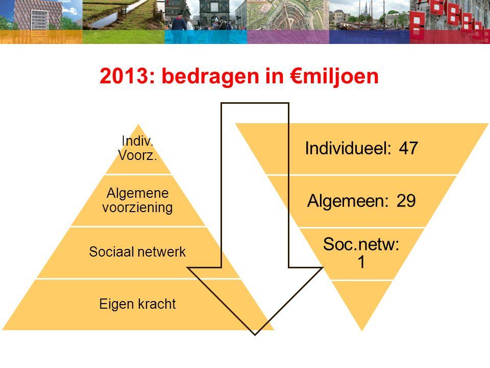 2013: bedragen in €miljoen Indiv. Voorz.