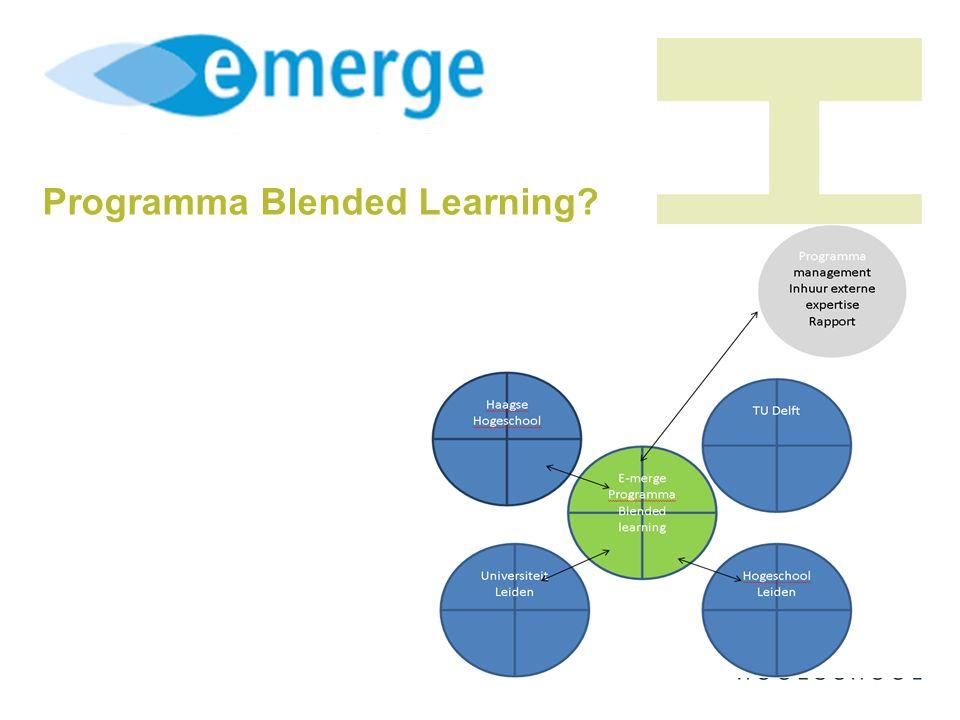 Programma Blended Learning