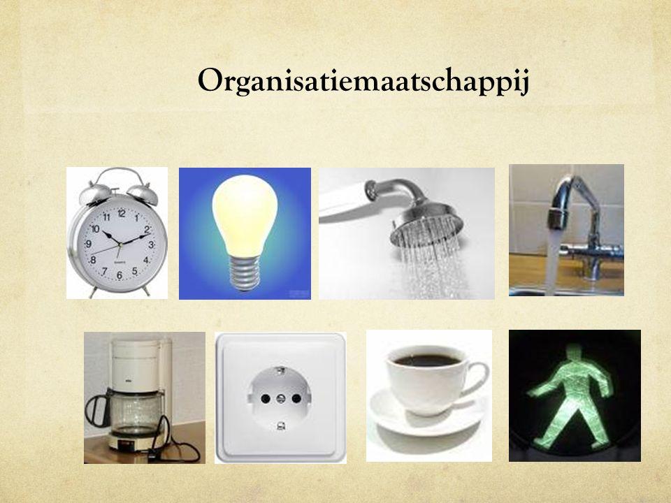 Organisatiemaatschappij