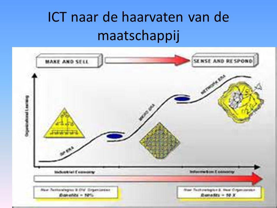 ICT naar de haarvaten van de maatschappij