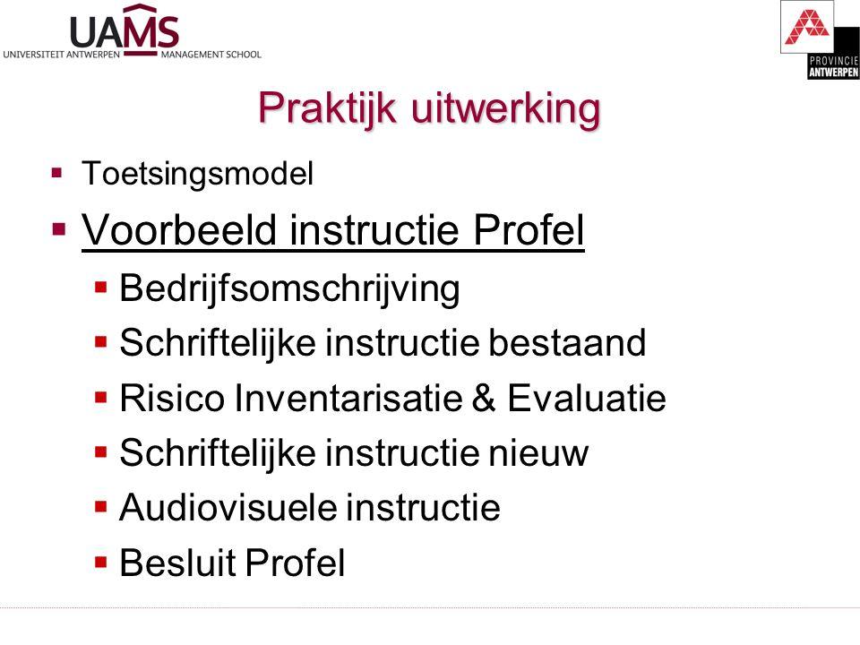 Praktijk uitwerking  Toetsingsmodel  Voorbeeld instructie Profel  Bedrijfsomschrijving  Schriftelijke instructie bestaand  Risico Inventarisatie