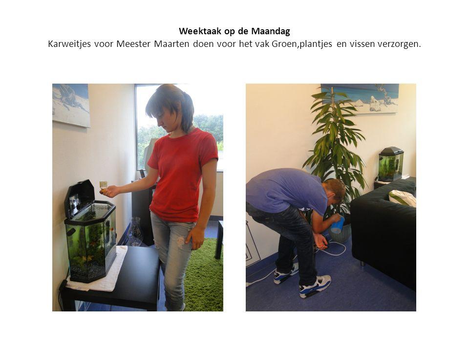 Weektaak op de Maandag Karweitjes voor Meester Maarten doen voor het vak Groen,plantjes en vissen verzorgen.