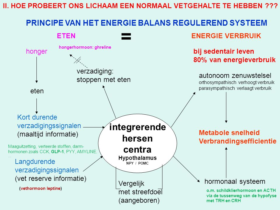 integrerende hersen centra Hypothalamus NPY / POMC Kort durende verzadigingssignalen (maaltijd informatie) Langdurende verzadigingssignalen (vet reserve informatie) Vergelijk met streefdoel (aangeboren) autonoom zenuwstelsel orthosympathisch verhoogt verbruik parasympathisch verlaagt verbruik hormonaal systeem Metabole snelheid Verbrandingsefficientie honger eten ETENENERGIE VERBRUIK verzadiging: stoppen met eten = PRINCIPE VAN HET ENERGIE BALANS REGULEREND SYSTEEM Maaguitzetting, verteerde stoffen, darm- hormonen zoals CCK, GLP-1, PYY, AMYLINE, … (vethormoon leptine) hongerhormoon: ghreline o.m.
