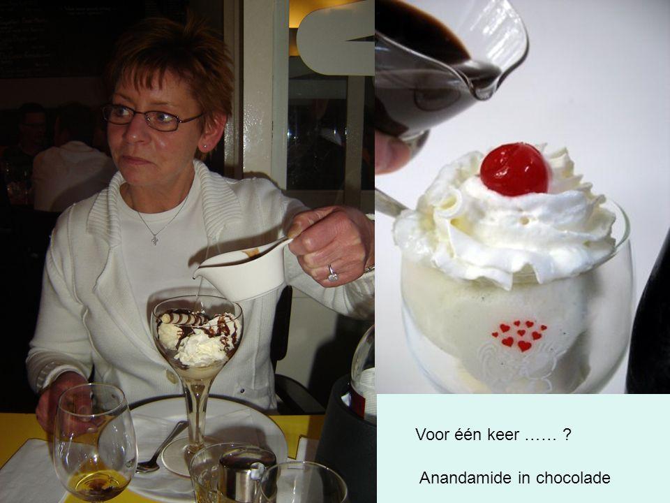 Voor één keer …… Anandamide in chocolade