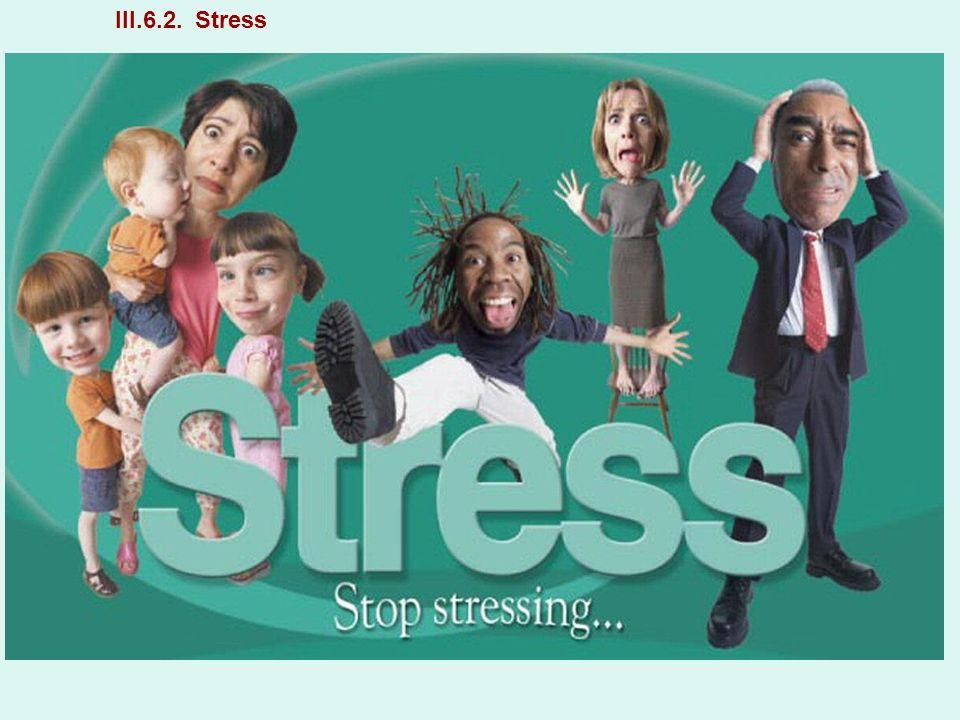 III.6.2. Stress