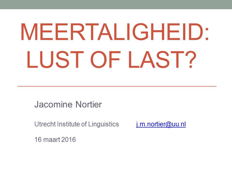 Onderwerpen VVTO vanuit het perspectief van meertaligheid, het belang van ontwikkeling van de moedertaal (want dat NT2 belangrijk is, wisten we al).