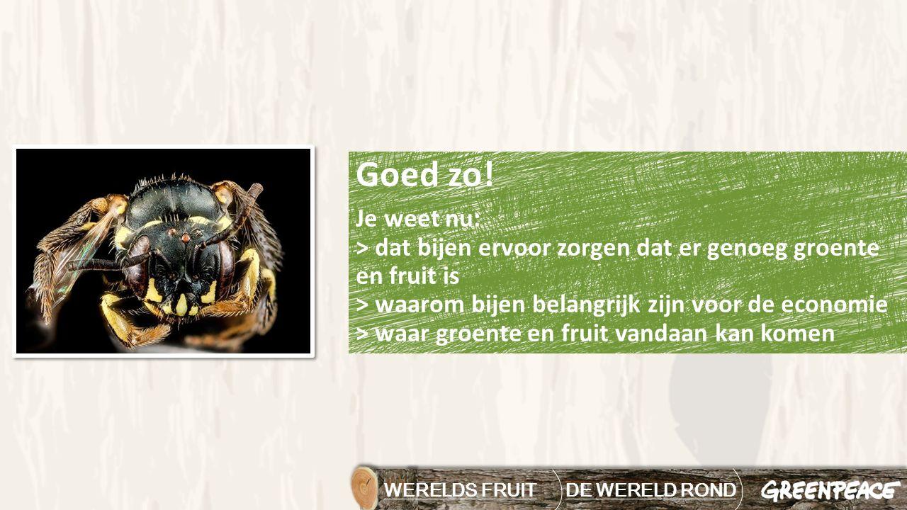 Goed zo! Je weet nu: > dat bijen ervoor zorgen dat er genoeg groente en fruit is > waarom bijen belangrijk zijn voor de economie > waar groente en fru