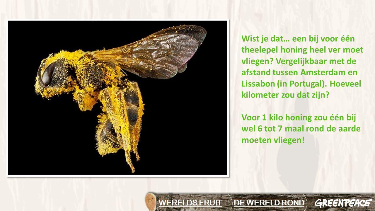 WERELDS FRUIT DE WERELD RONDDE WERELD ROND Wist je dat… een bij voor één theelepel honing heel ver moet vliegen? Vergelijkbaar met de afstand tussen A