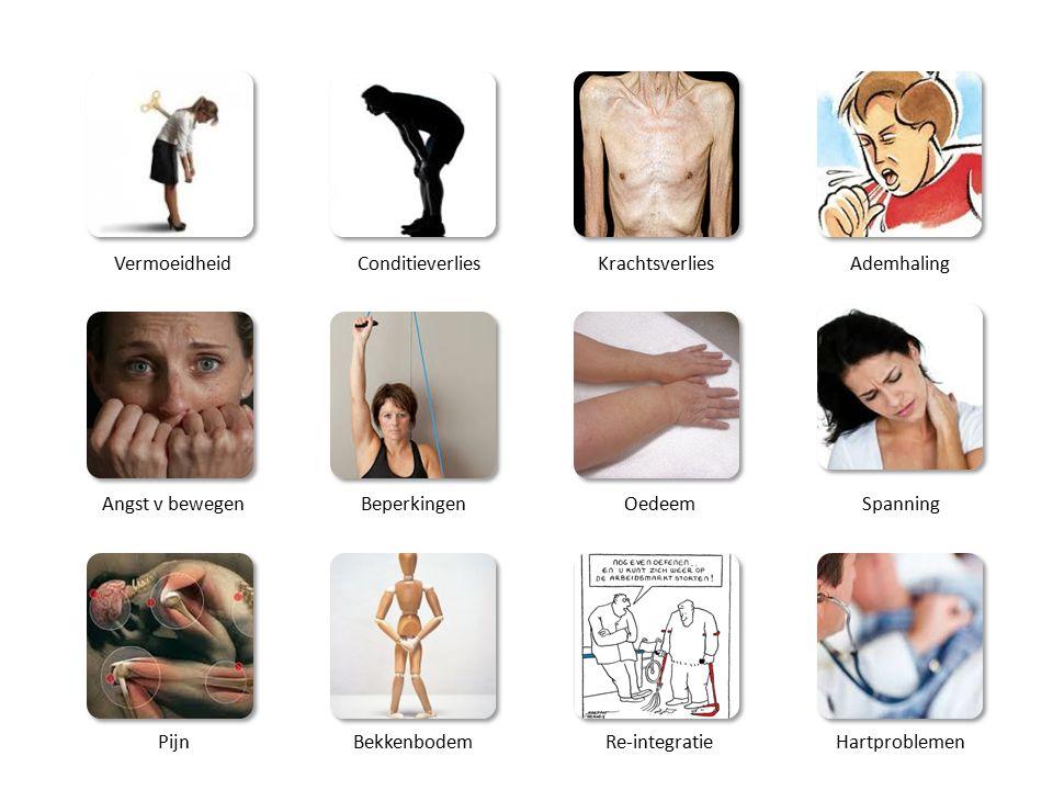 VermoeidheidConditieverliesKrachtsverliesAdemhaling Angst v bewegenBeperkingenOedeemSpanning PijnBekkenbodemRe-integratieHartproblemen