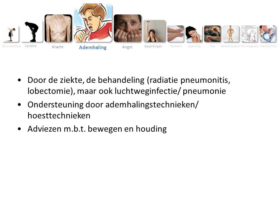 Beperkingen Oedeem SpanningPijnBekkenbodem Re-integratie Hartklachten Vermoeidheid Conditie Kracht Ademhaling Angst Door de ziekte, de behandeling (radiatie pneumonitis, lobectomie), maar ook luchtweginfectie/ pneumonie Ondersteuning door ademhalingstechnieken/ hoesttechnieken Adviezen m.b.t.
