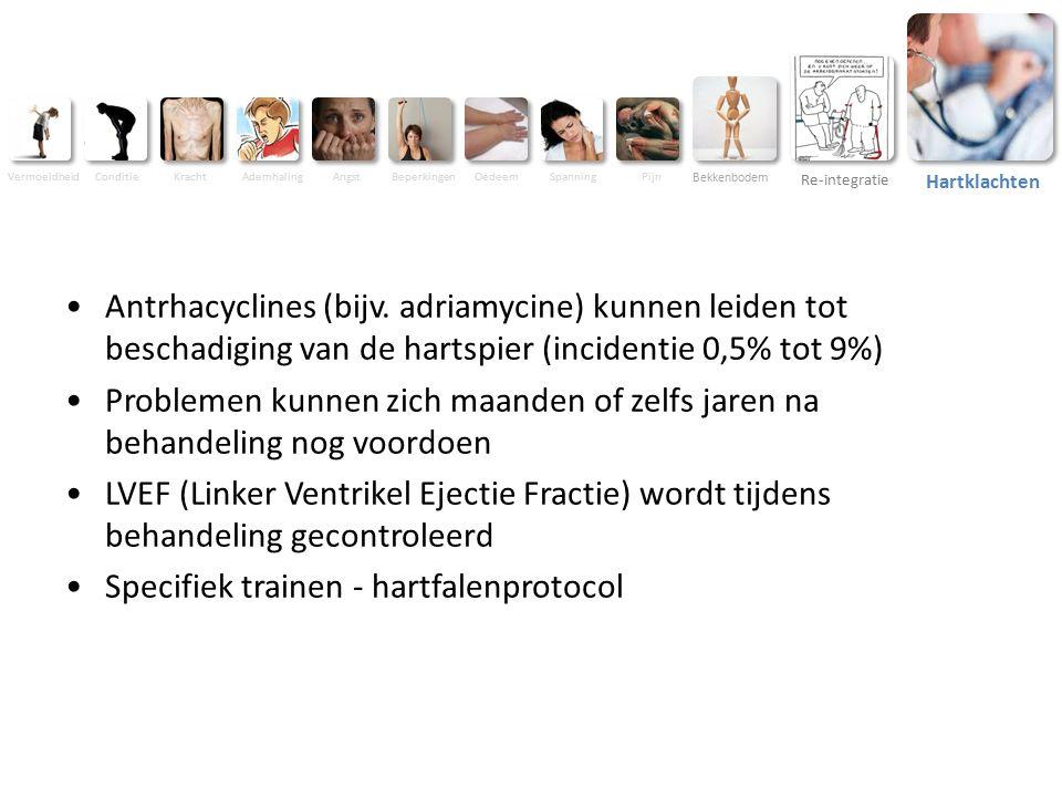 Vermoeidheid ConditieKracht AdemhalingAngstBeperkingenOedeemSpanningPijn Bekkenbodem Re-integratie Hartklachten Antrhacyclines (bijv.