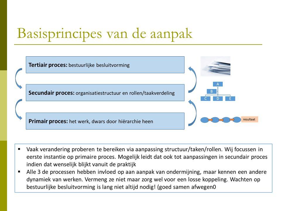 Basisprincipes van de aanpak