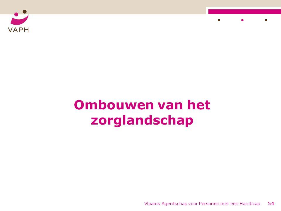 Ombouwen van het zorglandschap Vlaams Agentschap voor Personen met een Handicap54