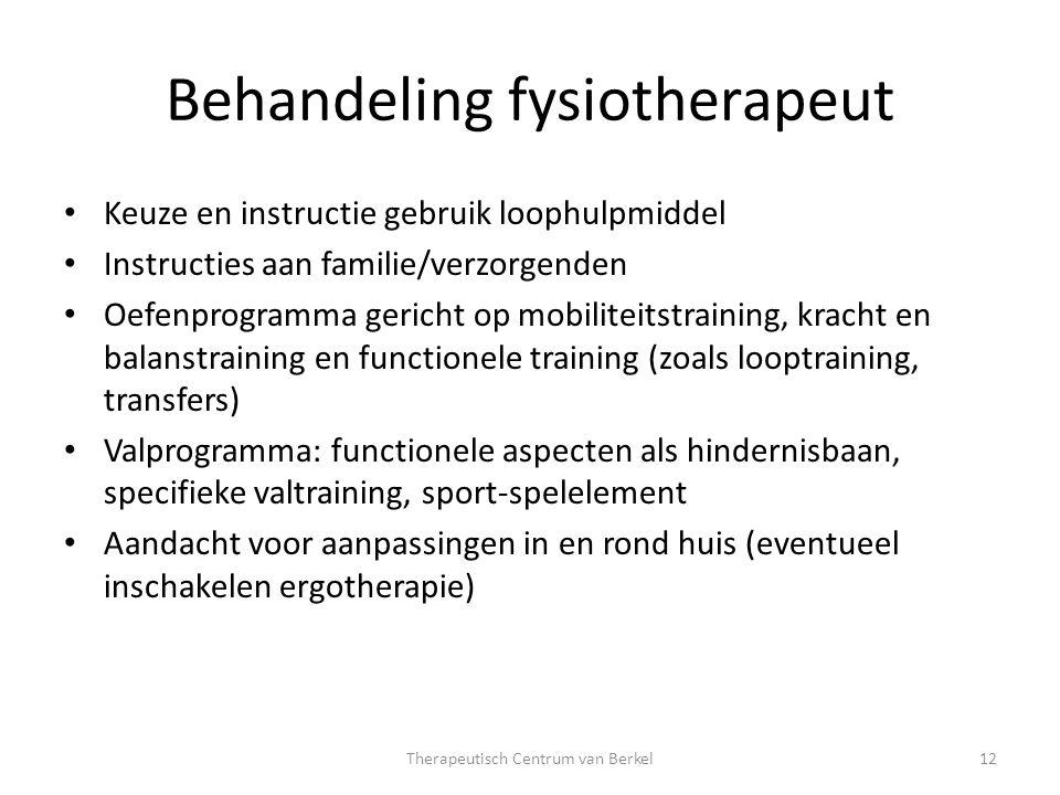 Behandeling fysiotherapeut Keuze en instructie gebruik loophulpmiddel Instructies aan familie/verzorgenden Oefenprogramma gericht op mobiliteitstraini