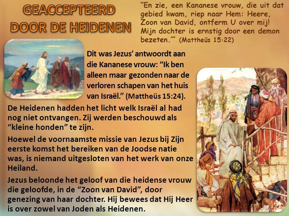 Jezus zei tegen hen: Hoeveel broden hebt u.