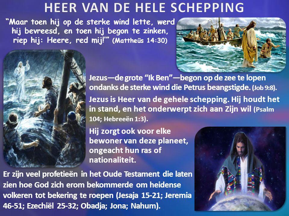 """""""Maar toen hij op de sterke wind lette, werd hij bevreesd, en toen hij begon te zinken, riep hij: Heere, red mij!'"""" (Mattheüs 14:30) Er zijn veel prof"""